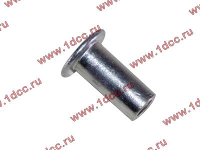 Заклепка алюминиевая 10х24 H2/H3 HOWO (ХОВО) 189000340068 AL фото 1 Чита