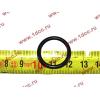 Кольцо уплотнительное форсунки резиновое H2/H3 HOWO (ХОВО) VG609070080 фото 2 Чита