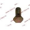 Болт пустотелый М12х1,25 (штуцер топливный) H HOWO (ХОВО) 90003962607 фото 3 Чита