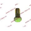 Болт пустотелый М10х1,0 (штуцер топливный) H HOWO (ХОВО) 81500070054 фото 3 Чита